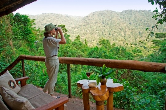 Immersed in the spectacular rainforest at Bwindi Impenetrable National Park